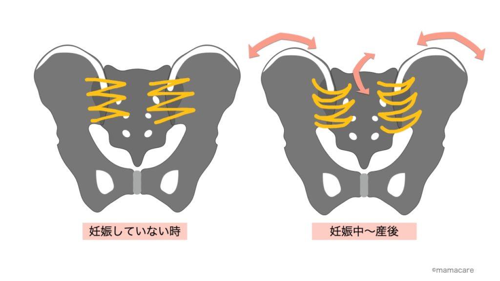 靭帯の緩み